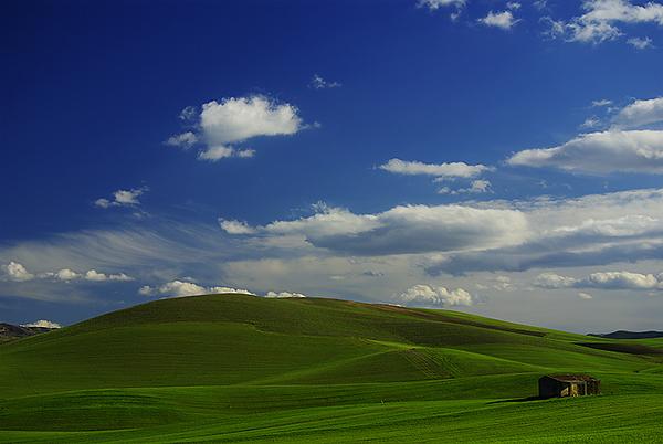 Prof costantini linee virtuali for Semplici paesaggi